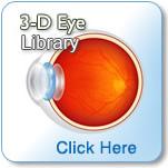 3-D Eye Library